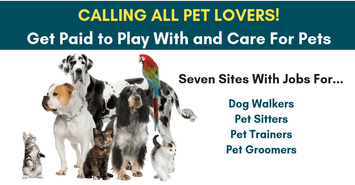 Get Paid To Play With And Care For Pets Real Work From Home Jobs By Rat Race Rebellion Pet Sitting Jobs Pet Sitting Business Pet Care Jobs