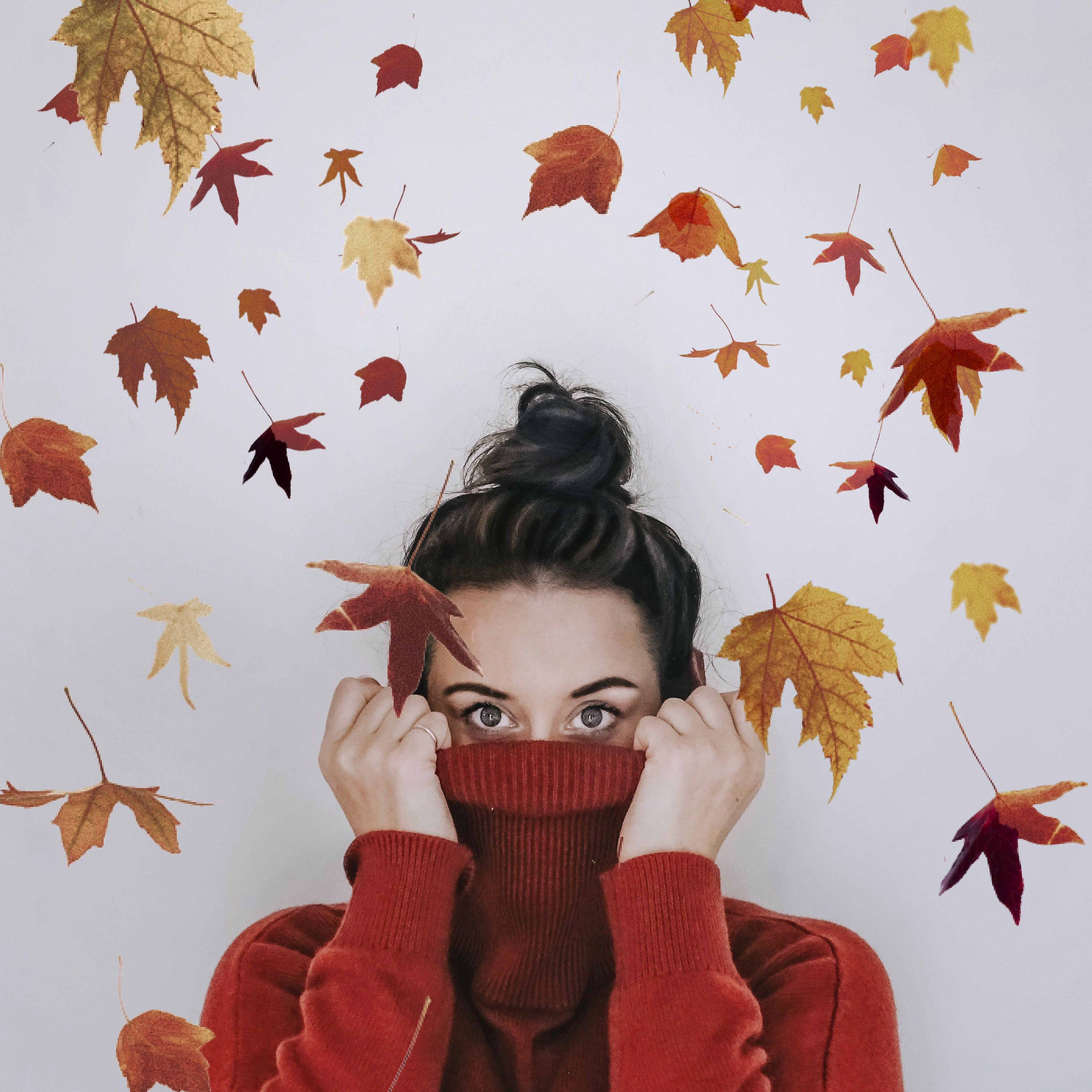 Cosy autumnal jumper and leaves  #autumnleavesfalling Autumn portrait. Roll neck jumper autumn style. Fun portrait for autumn. Leaves falling photo. #autumnleavesfalling Cosy autumnal jumper and leaves  #autumnleavesfalling Autumn portrait. Roll neck jumper autumn style. Fun portrait for autumn. Leaves falling photo. #autumnleavesfalling Cosy autumnal jumper and leaves  #autumnleavesfalling Autumn portrait. Roll neck jumper autumn style. Fun portrait for autumn. Leaves falling photo. #autumnleav #autumnleavesfalling