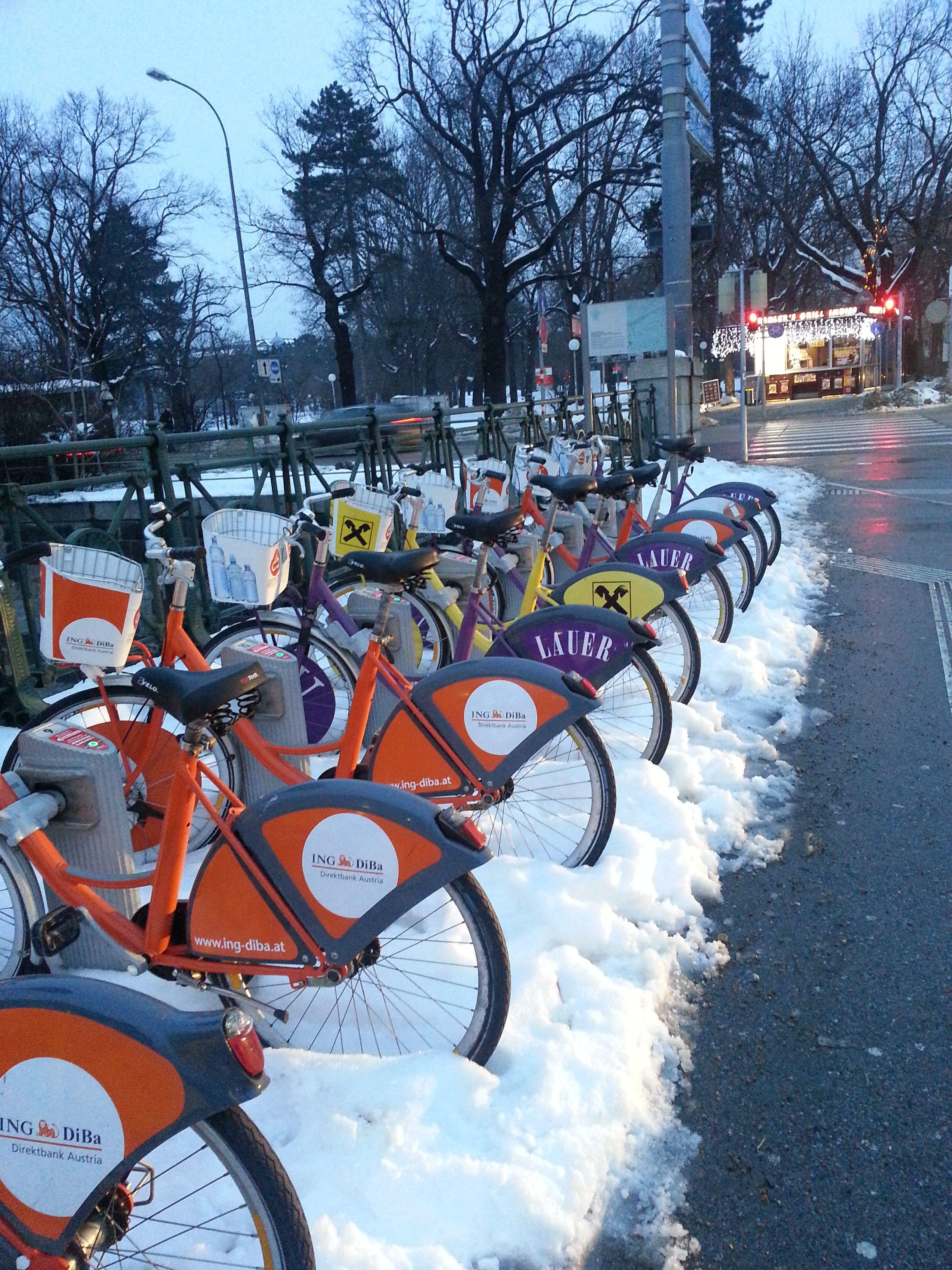 aluguel de bicicletas | viena | pinterest, Hause ideen