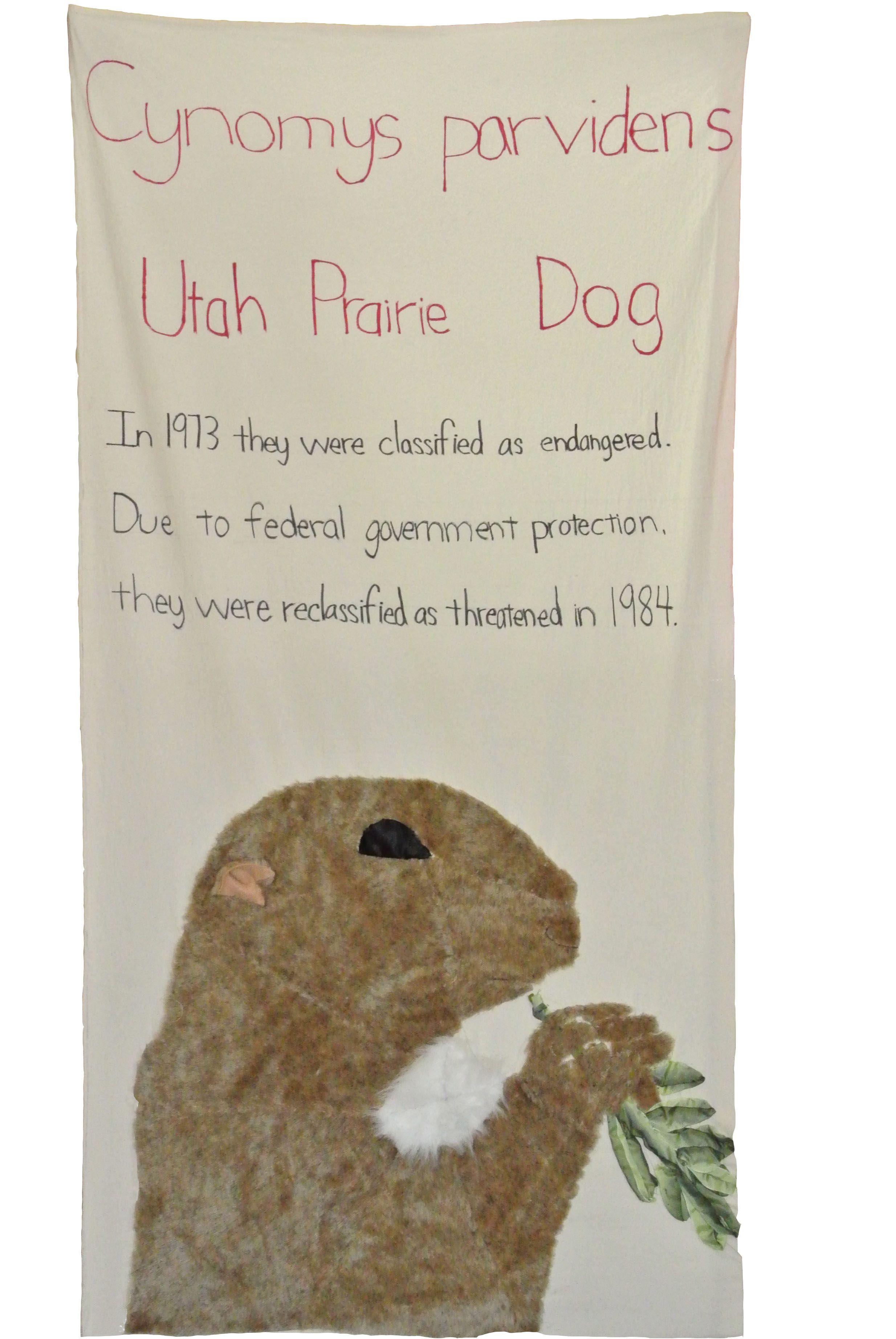 Utah Prairie Dog Panel Done By 6th Graders At Thomas Starr