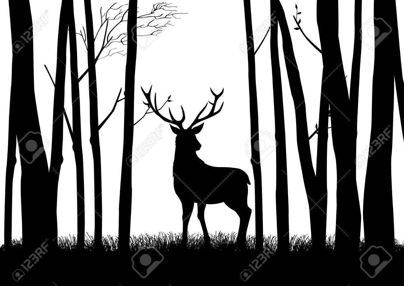 woods silhouette Google Search Silhouette art, Deer