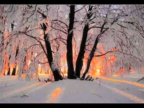 Blood Sweat And Tears Quot Sometimes In Winter Quot Steve Katz