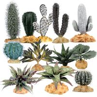 xerophytic adaptations to reduce water loss