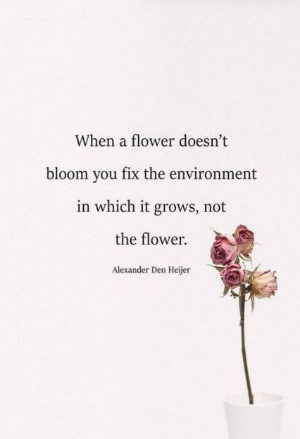 Flowers quotes love inspiration words 39+ ideas