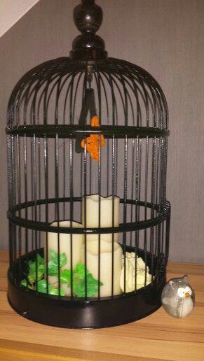 die besten 25 vogelk fig deko ideen auf pinterest vogelk fige vogelk fig dekoration und. Black Bedroom Furniture Sets. Home Design Ideas