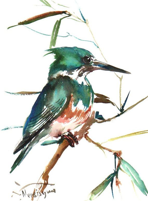 Green Kingfisher Original Watercolor Painting 12 X 9 In Green