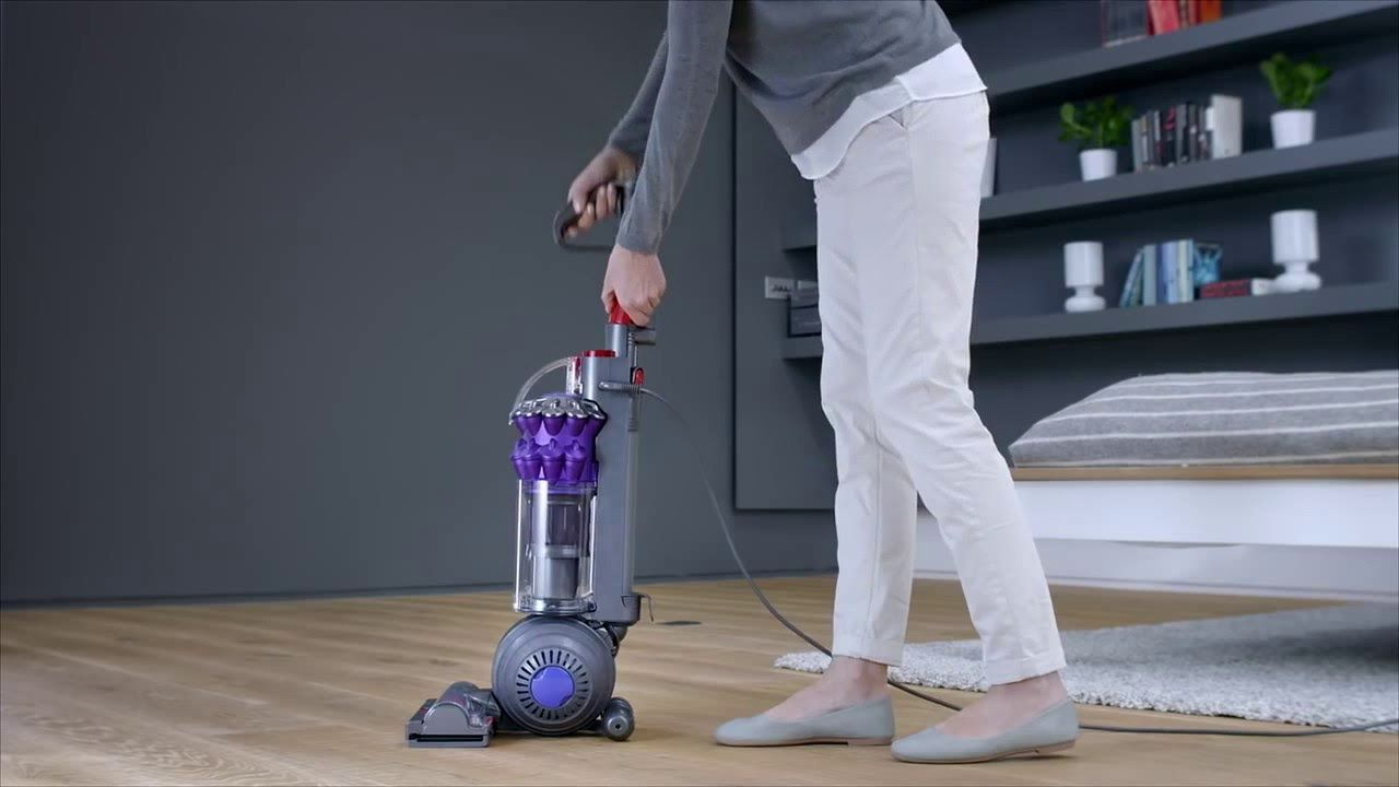 Dyson Small Ball Animal Review Dyson Small Ball Animal Is