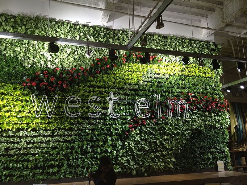Attractive LIving Walls VersaWalls | Interior Plant Design | Los Angeles Indoor Plants  | Exhibit Ideas | Pinterest | Interior Plants, Plant Design And Living Walls