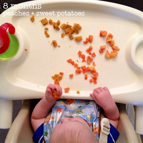 Baby-Led Weaning and snack ideas (4-6 months and beyond)