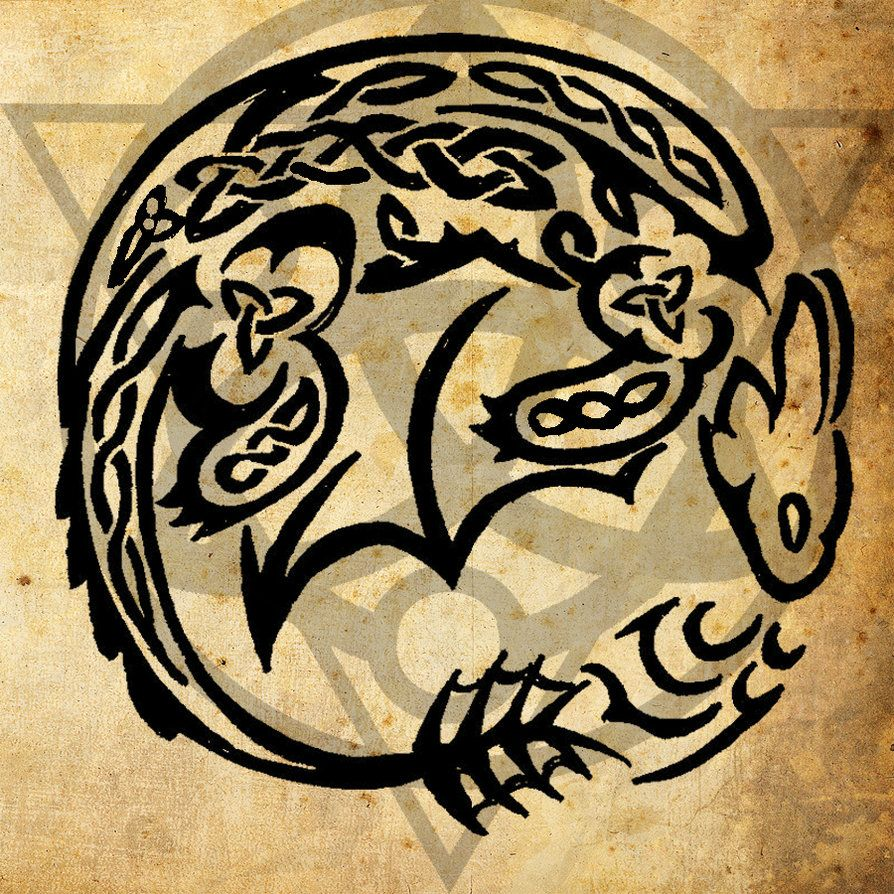Celtic Night Fury Tattoo By Wildtheory On Deviantart How Train Your Dragon How To Train Your Dragon Toothless Tattoo