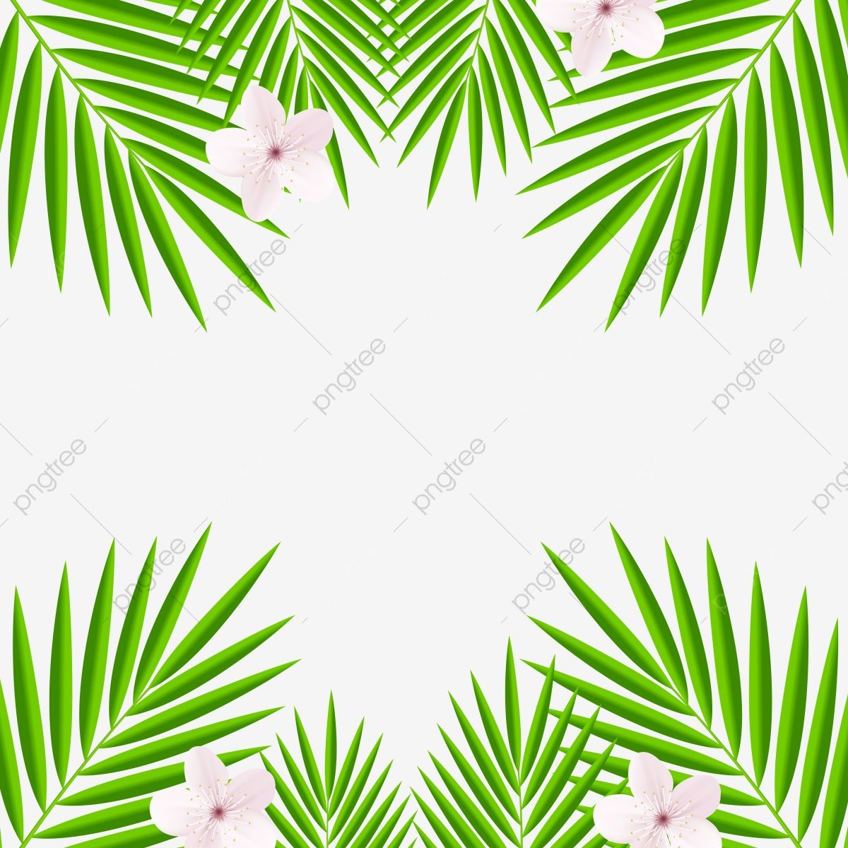 Forest Palm Leaves Green Tree Leaf Frame Tree Clipart Palm Leaf Png And Vector With Transparent Background For Free Download Green Trees Tree Leaves Palm Leaves