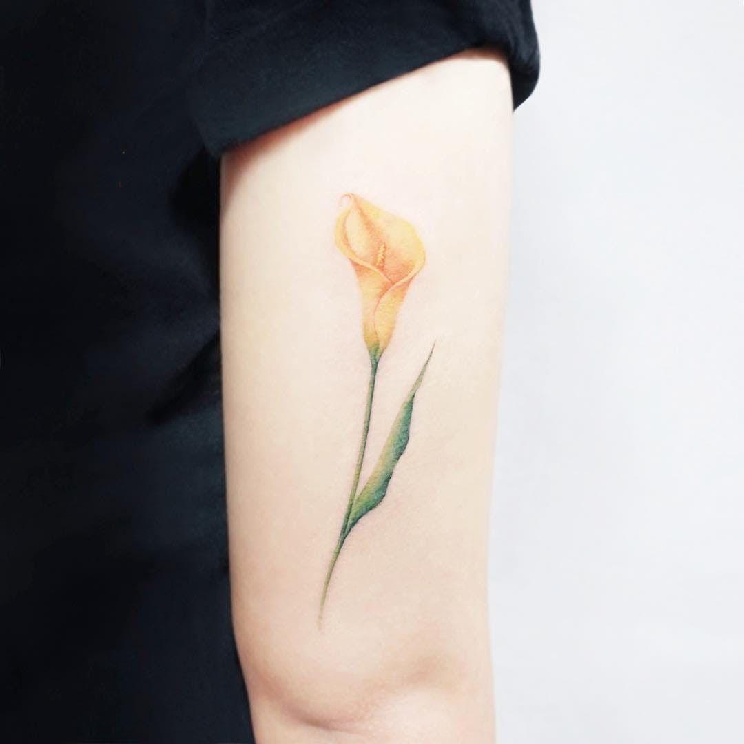 Light Arum Lily Tattoo Calla Lily Tattoos Lillies Tattoo Lily Tattoo Calla Lily Tattoos