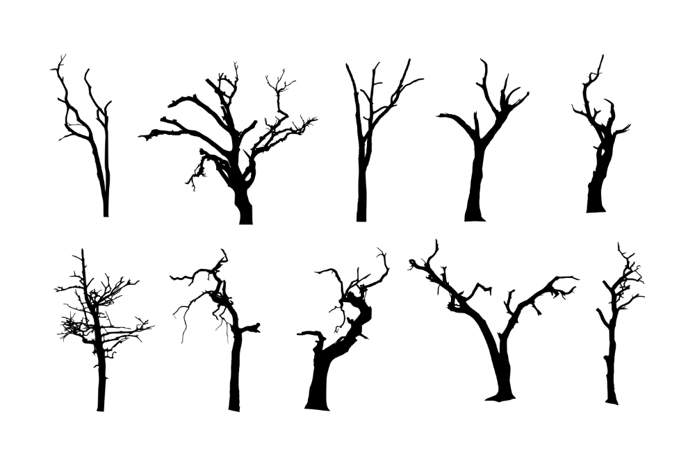 10 Spooky Dead Tree Silhouette Png Transparent Vol 2 Onlygfx Com Tree Silhouette Dead Tree Tattoo Tree Drawing