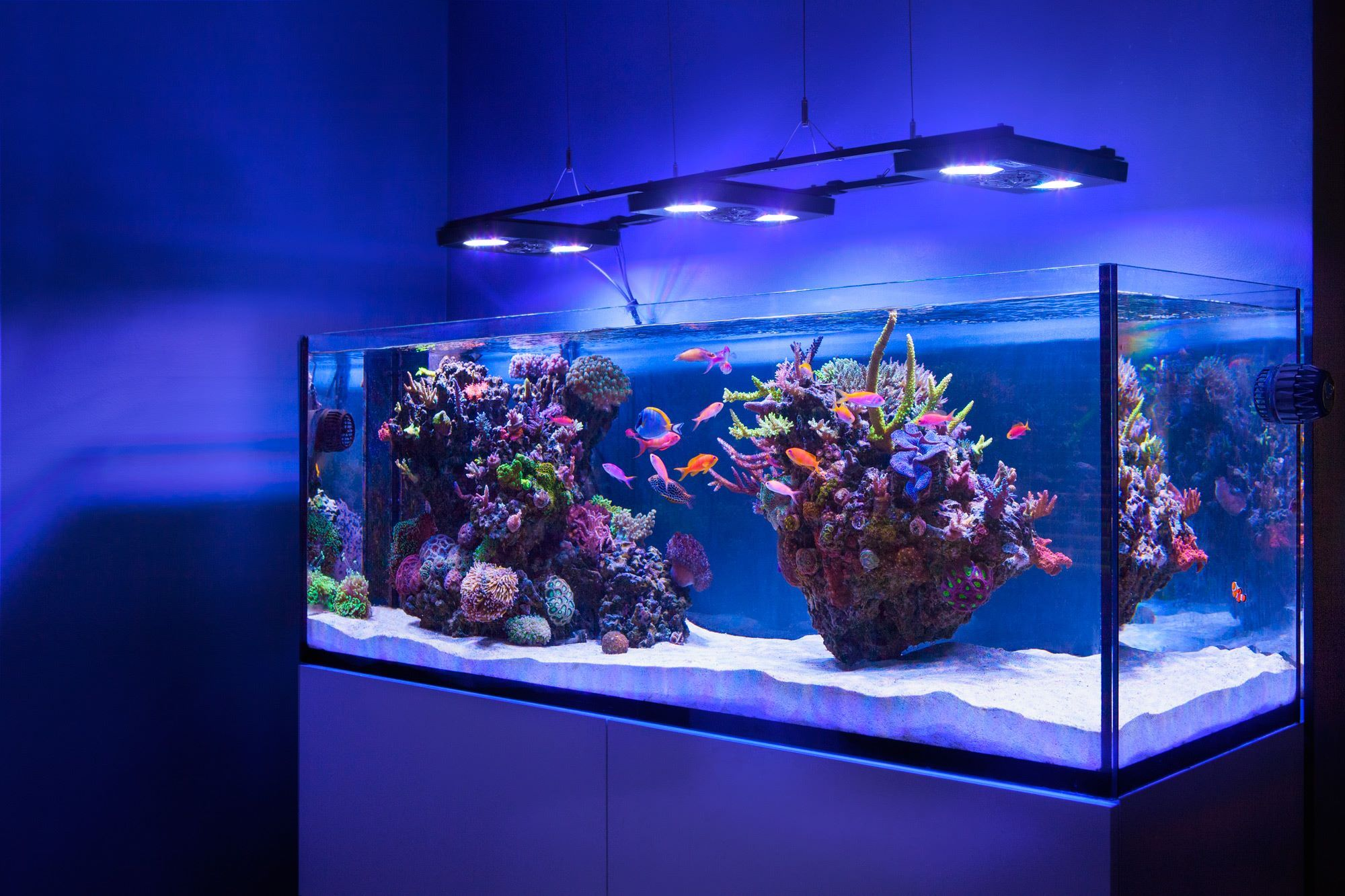 how to make saltwater for fish tank