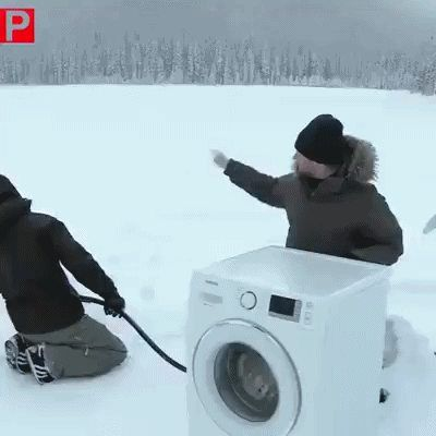 Be Careful : When Bears Attack - GIF on Imgur