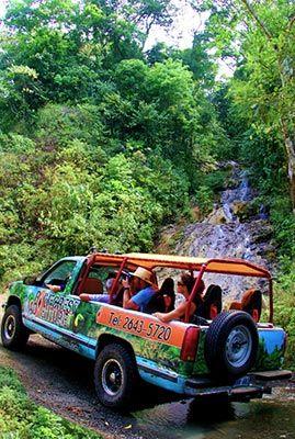0843d41c3c8f7b3f46375a2baee026ef - Pura Vida Gardens And Waterfalls Jaco
