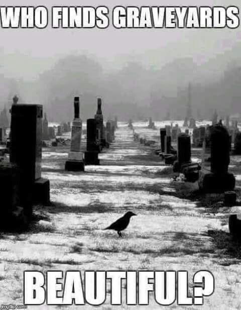 Graveyards are Beautiful