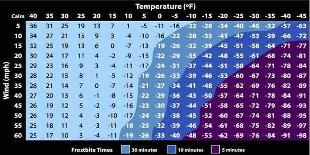Chart Here S How Long You Can Stay Outside In Extreme Cold Temperatures Before Getting Frostbite Wind Chill Chart Temperature Chart