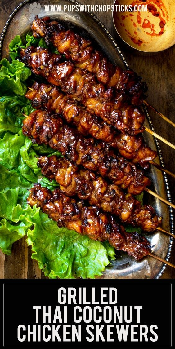 Grilled Thai Coconut Chicken Skewers Recipe In 2020 Chicken Skewer Recipe Skewer Recipes Bbq Recipes