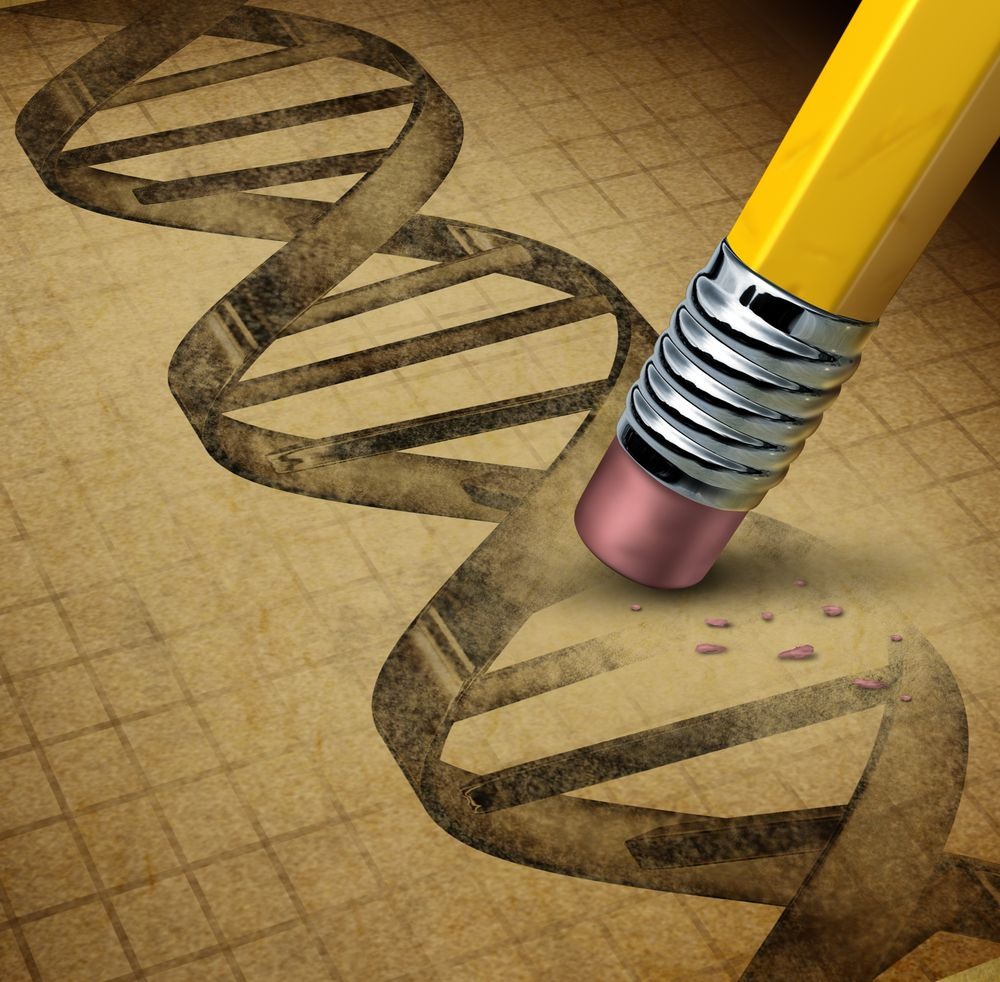 What Are Gmos And Gm Foods With Images Genetics Genetic