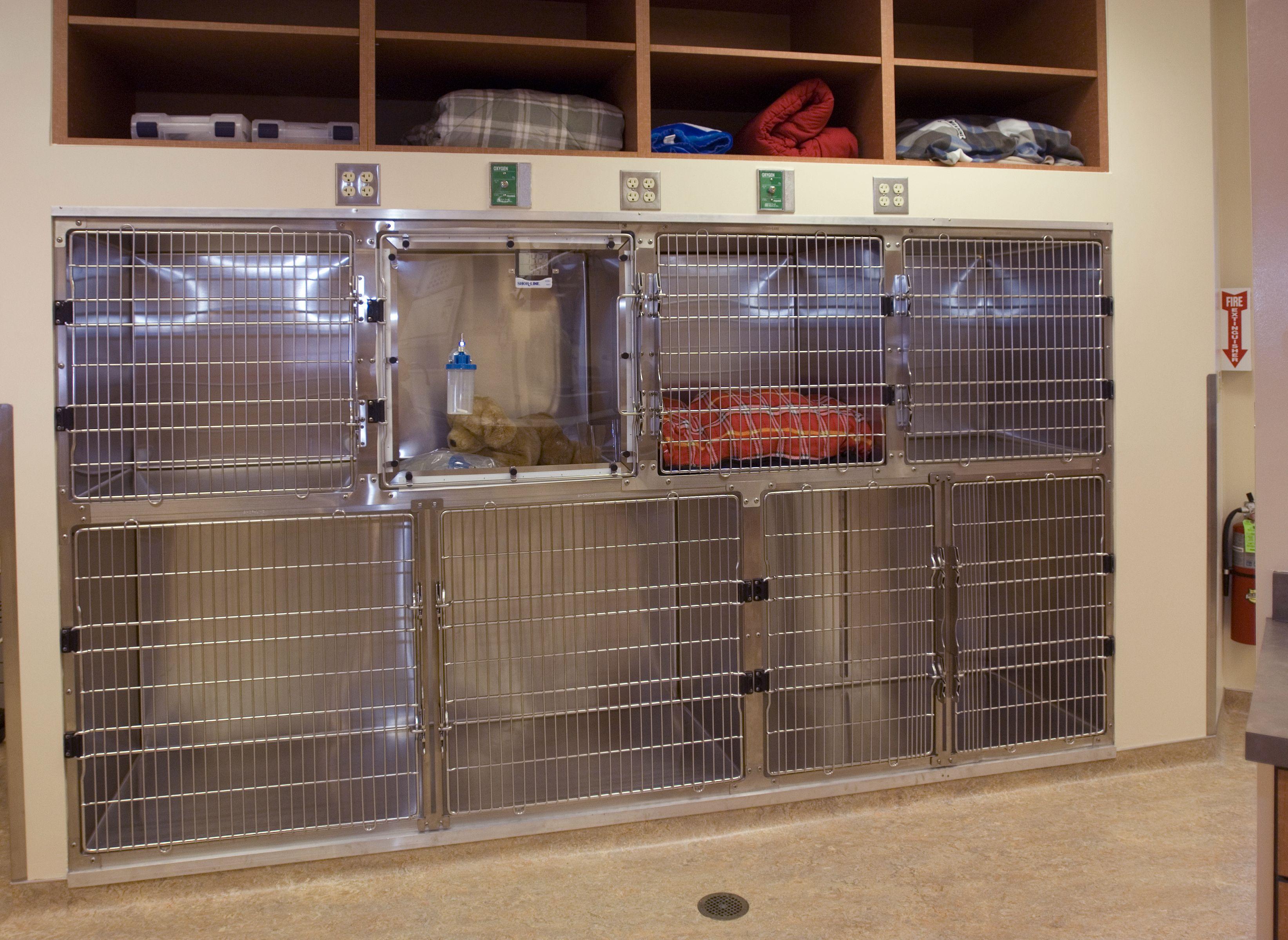 Cages Vet clinics, Clinic design, Hospital design