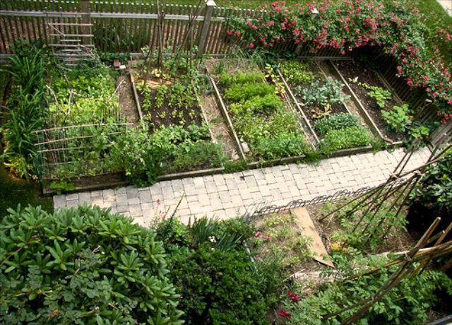 Grow Co. garden plot