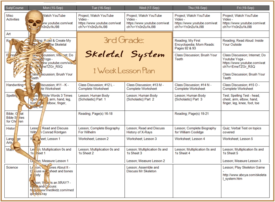 Learn the Skeletal System {Grade Three Unit Study} | Free ...
