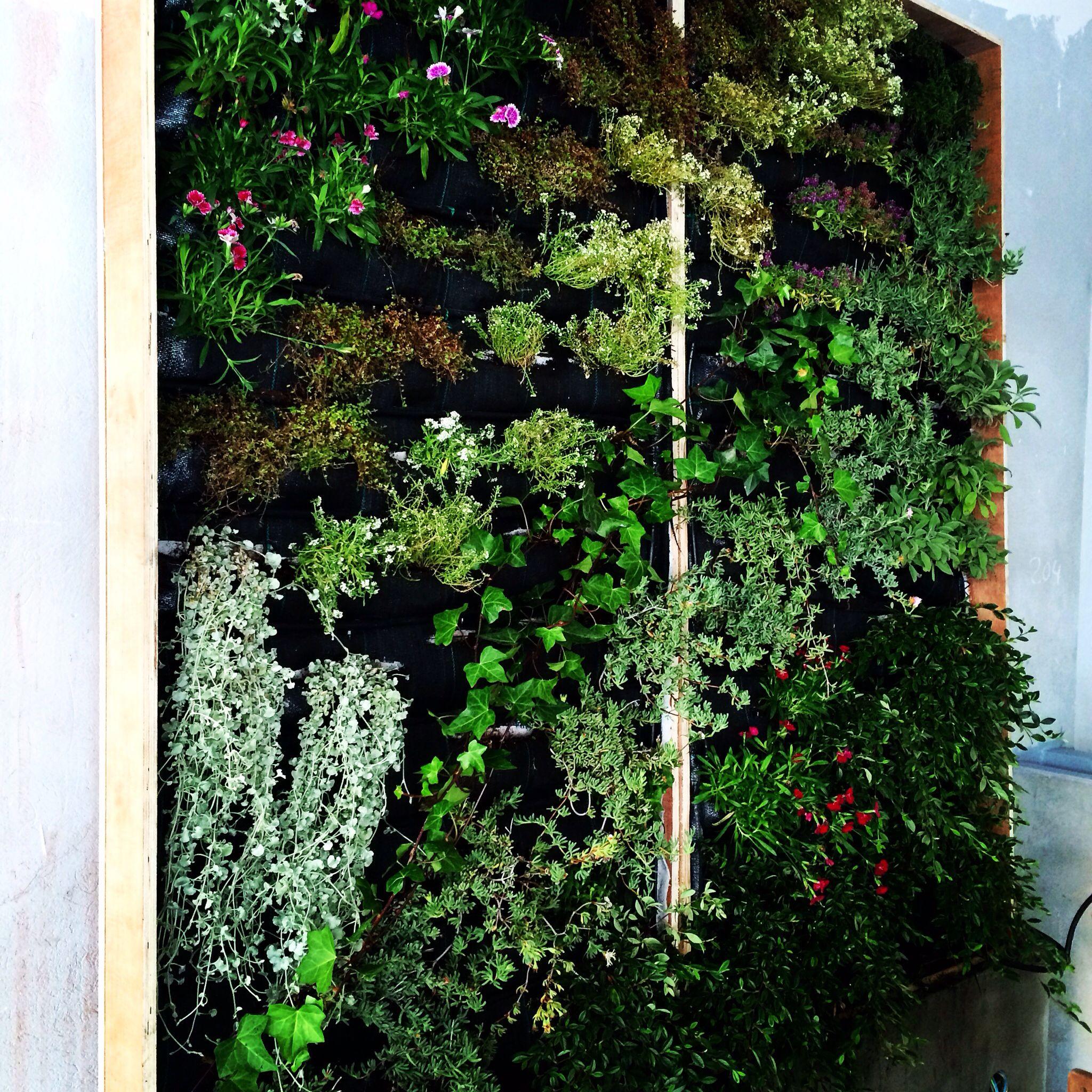 Vertical garden my way coruña