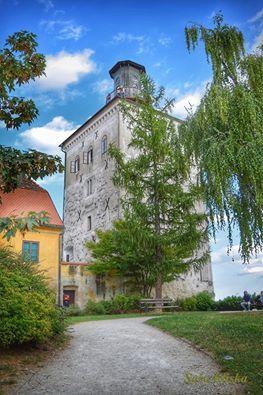 Kula Lotršćak , Zagreb