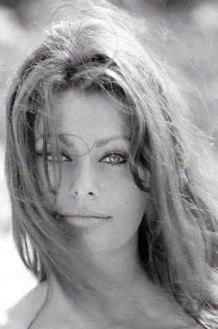 Sophia Loren - 1968 | Bellezza italiana, Donne celebrità ...