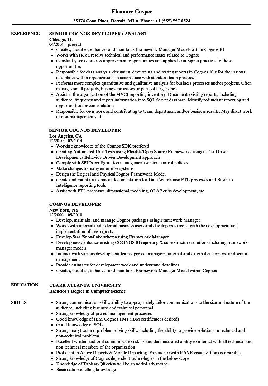 Cognos Developer Resume Samples Velvet Jobs intended for