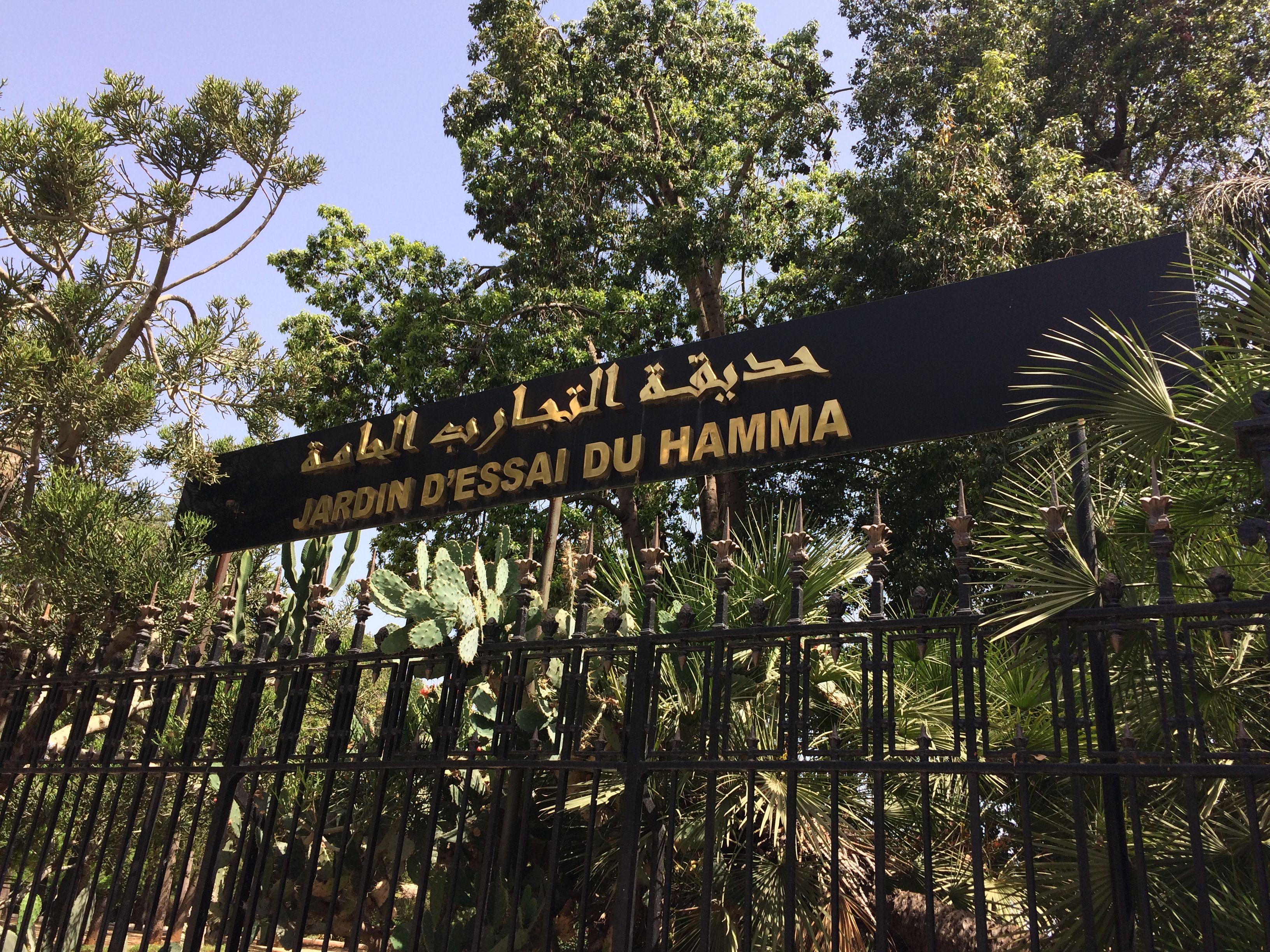 2e Incontournable Jardin D Essai El Hamma Jardins Alger