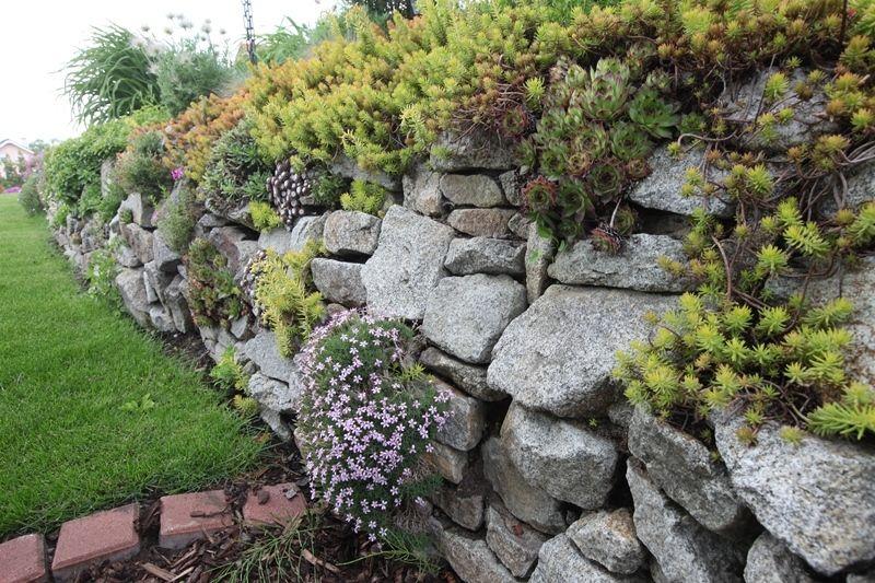 Záhradka s domom uprostred: Z každej strany máte čo obdivovať
