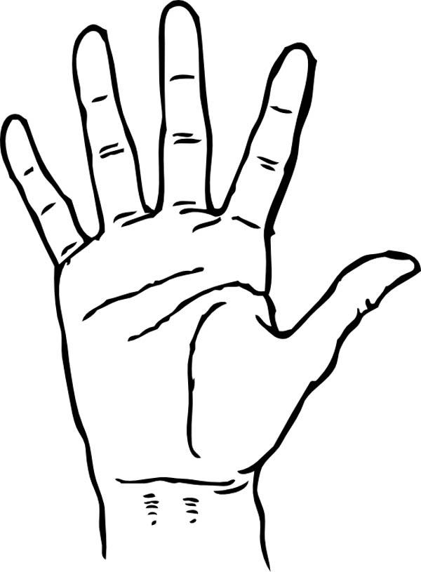 Hand Palm Gesture Illustration Ad Affiliate Affiliate Palm Gesture Illustration Hand Hand Palm Illustration Graphic Image