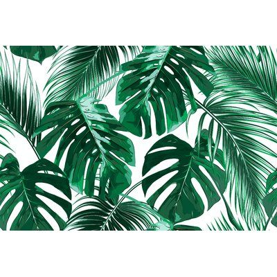 "Bay Isle Home Zigler Removable Tropical Palm Leaves 9.17' L x 175"" W Peel and Stick Wallpaper Roll 