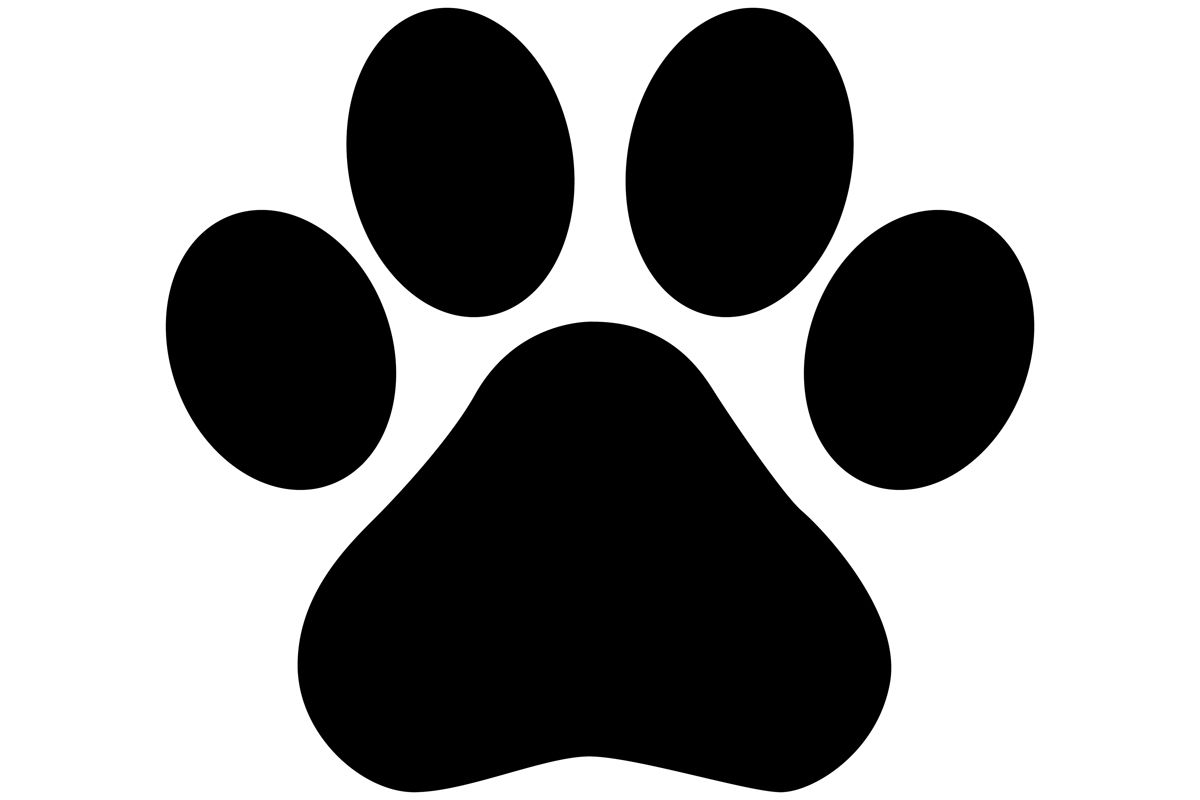 paw print silhouette in 2020 paw print paw