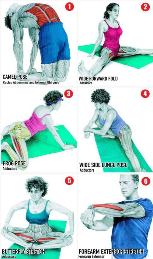 stephfitblr:   this is super helpful!!! - Scandal Bayou Beauty