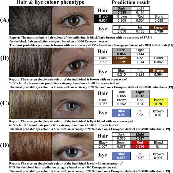 A New Method Of Establishing Hair And Eye Colour From Modern