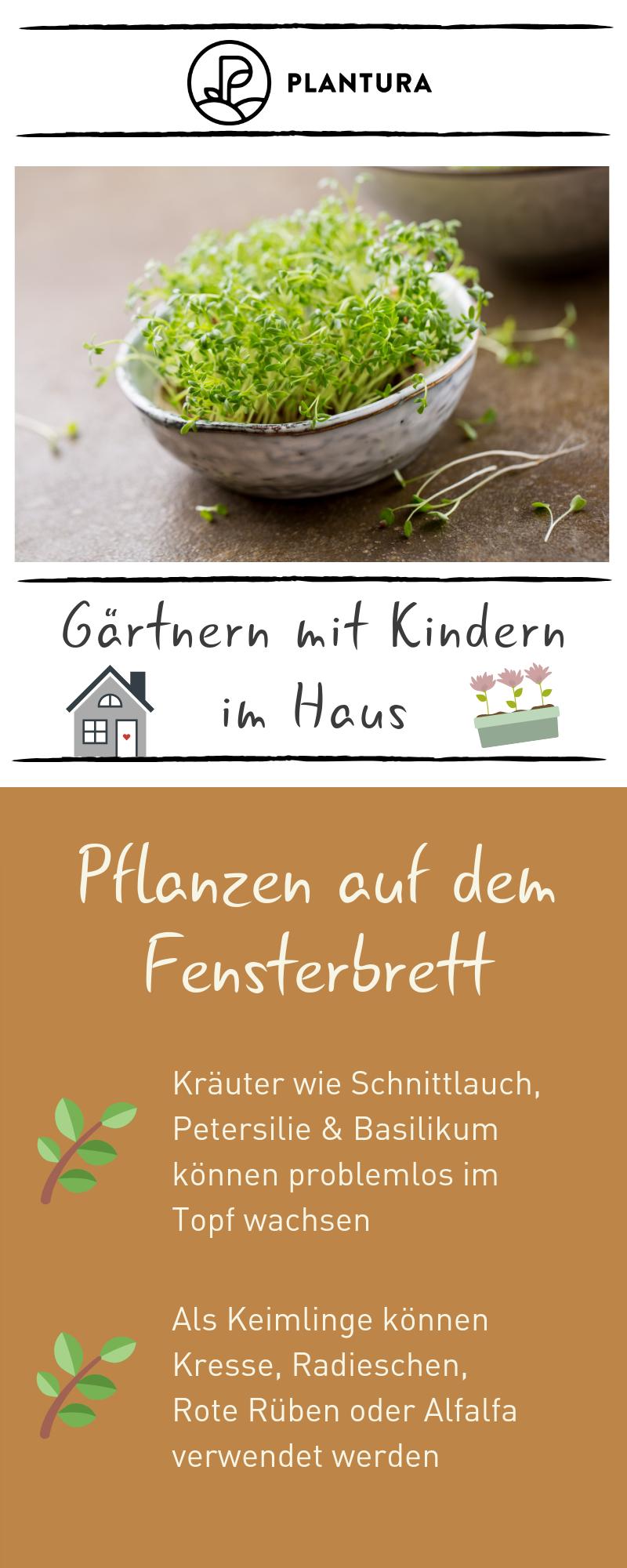 Gartenarbeit mit Kindern im Haus – Pflanzen auf dem Fe – Garten Herbst Idee – Garten Mit Kindern