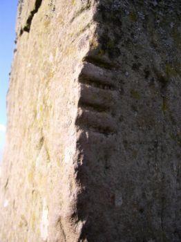 Celtic Astrological Signs