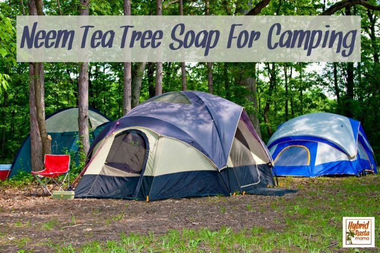 How To Get Rid Of Ants 9 Natural Ways To Prevent Ants Utah Camping Camping Experience Camping Places