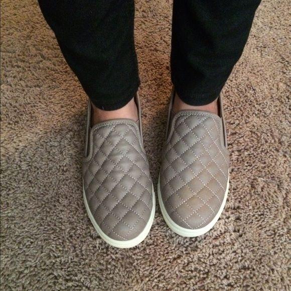 Steve Madden Ecentrcq sneakers