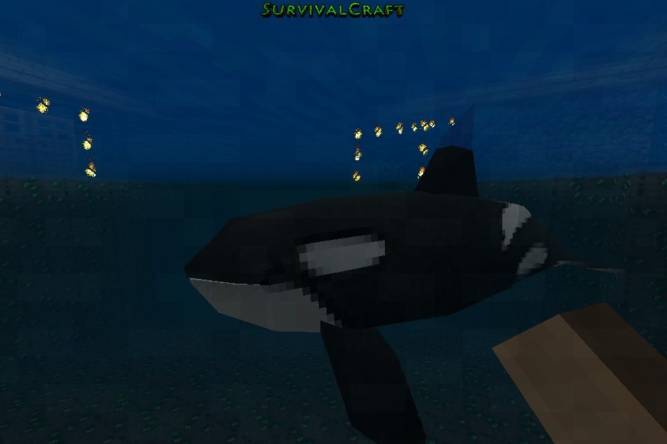 Minecraft killer whale   Sea animals   Pinterest   Killer ...
