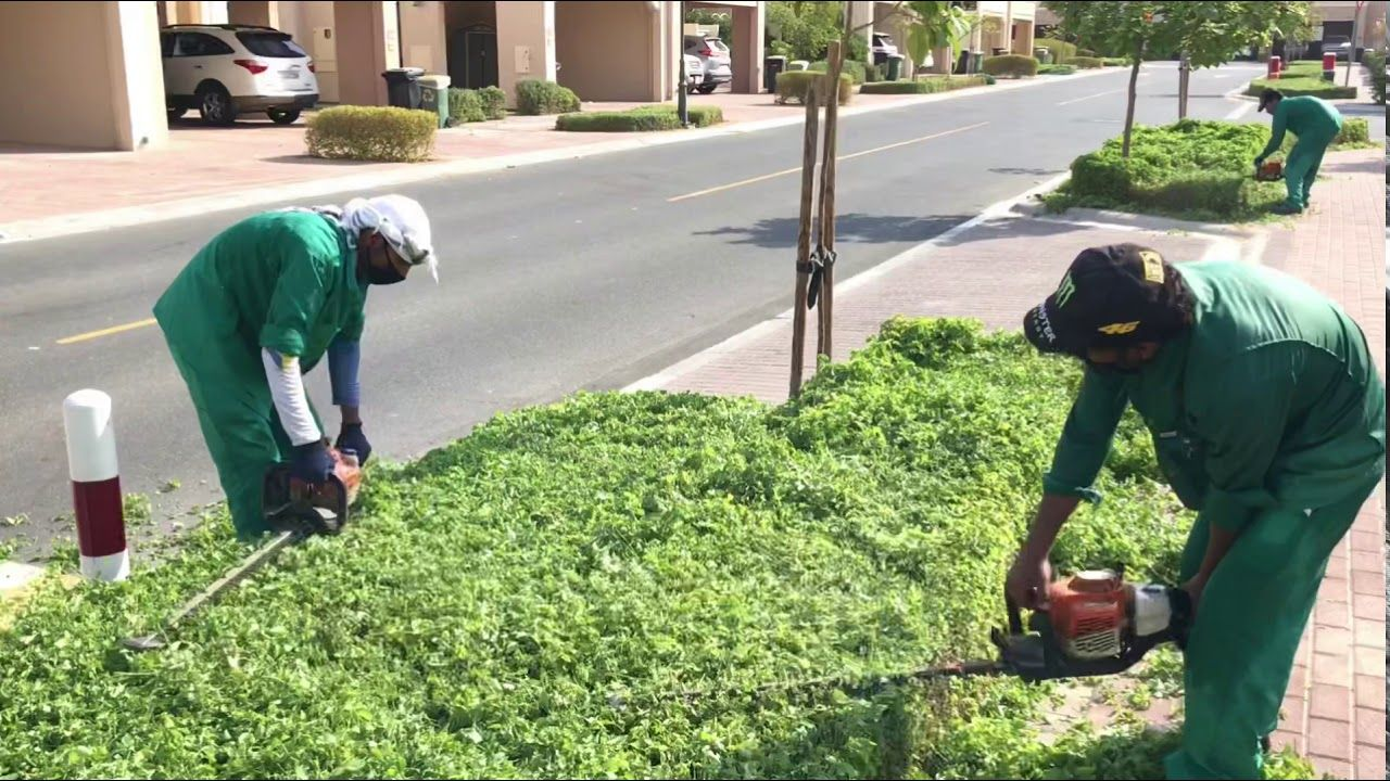 How to do trimming of landscaping How to do a