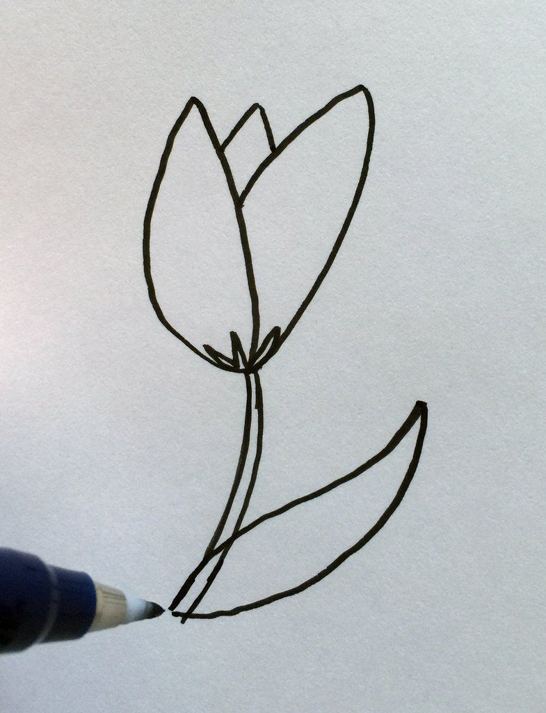 Four Ways To Draw Flowers Open Rose Flowers And Spiral