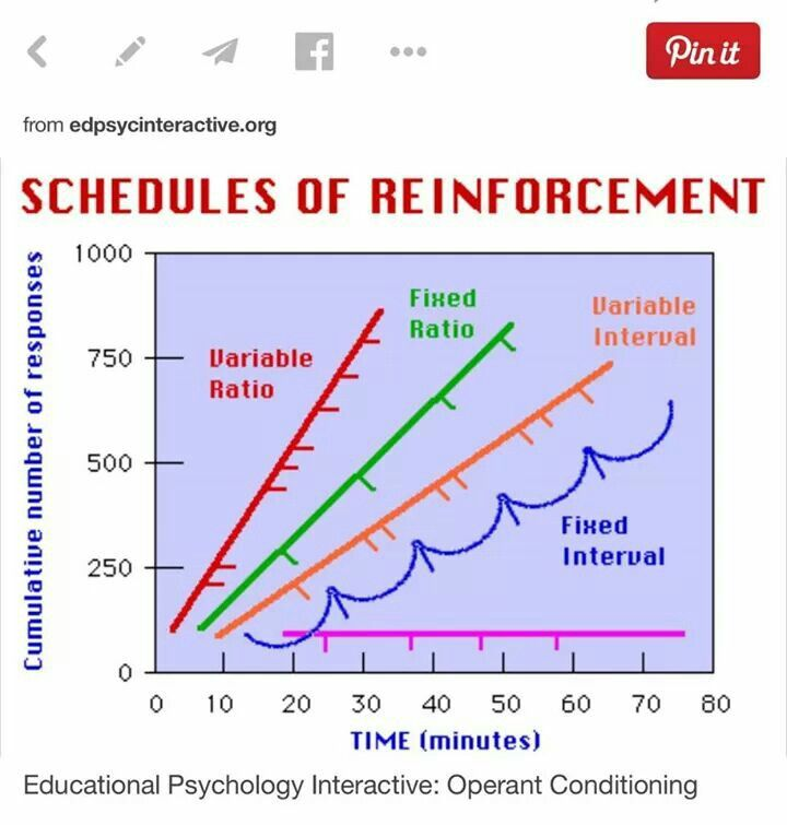 Schedules of reinforcement visual Mind Games Pinterest Aba - behavior analysis samples