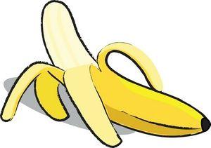Banana food. Clip art images stock