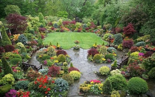 Colorful Flowers and Trees for Gardening Inspiration Amazing love
