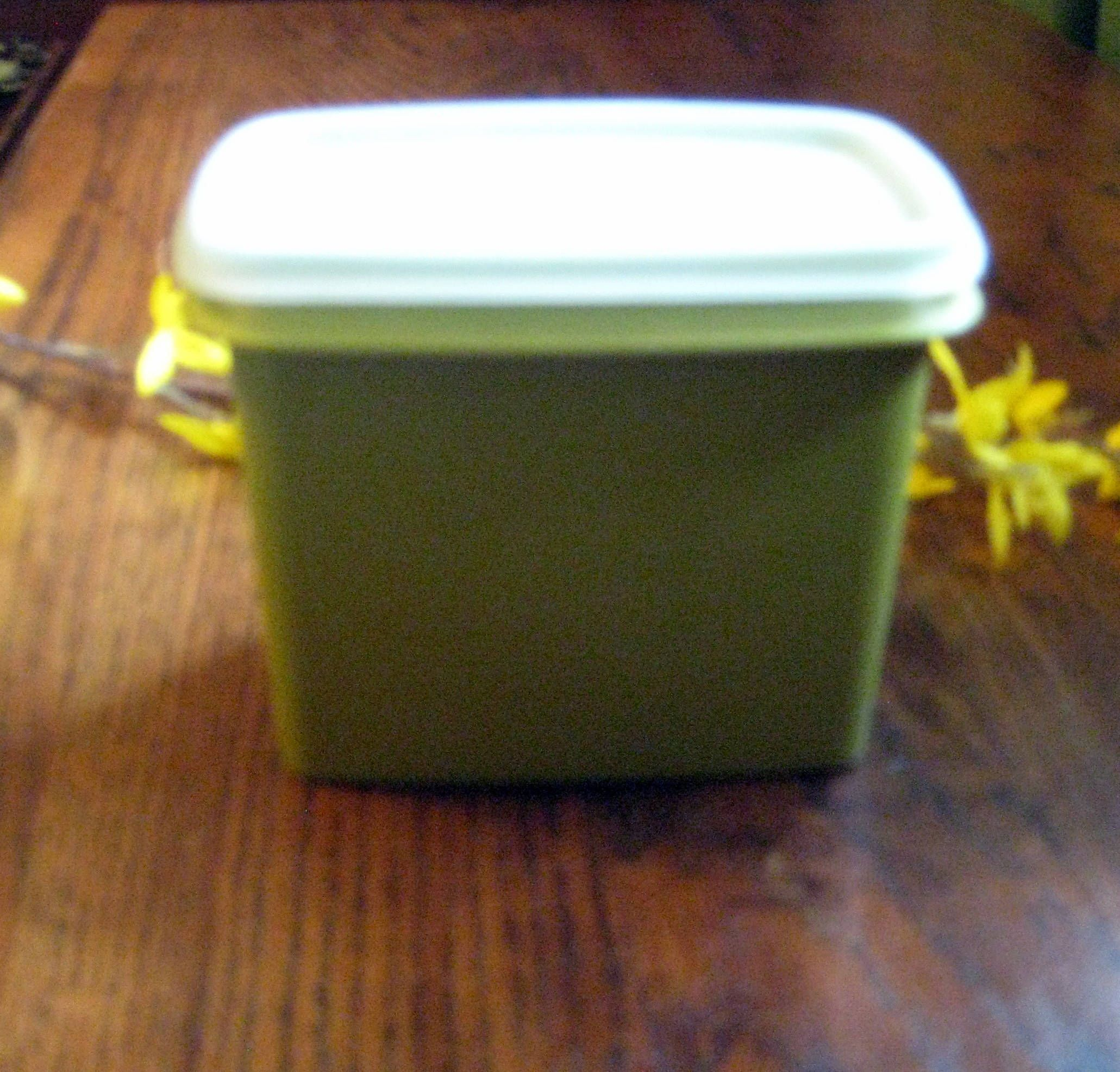 Tupperware Storage Container,Rectangle Tupperware,Olive Green  Tupperware,Kitchen Containers,Picnic Storage