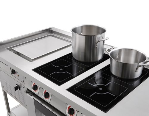 High Quality Induction Stove With Plancha Grill, Maybe Our Range Could Include A Couple  Induction Tops?